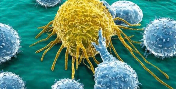 Sugar Doesn't Just Feed Cancer Cells, It Actually CREATES Them!