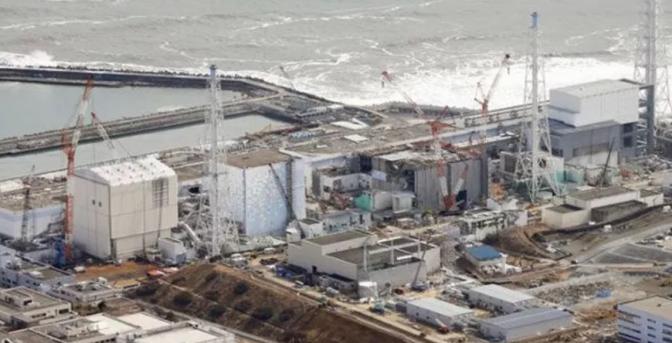 Fukushima's radiation reaches 'unimaginable' levels