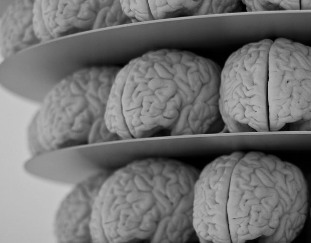Scientists remotely hacked a brain, controlling body movements – BGR